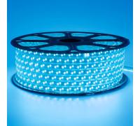 Led лента синяя 220V smd2835 120LED/m 12Вт/m IP65, 1м